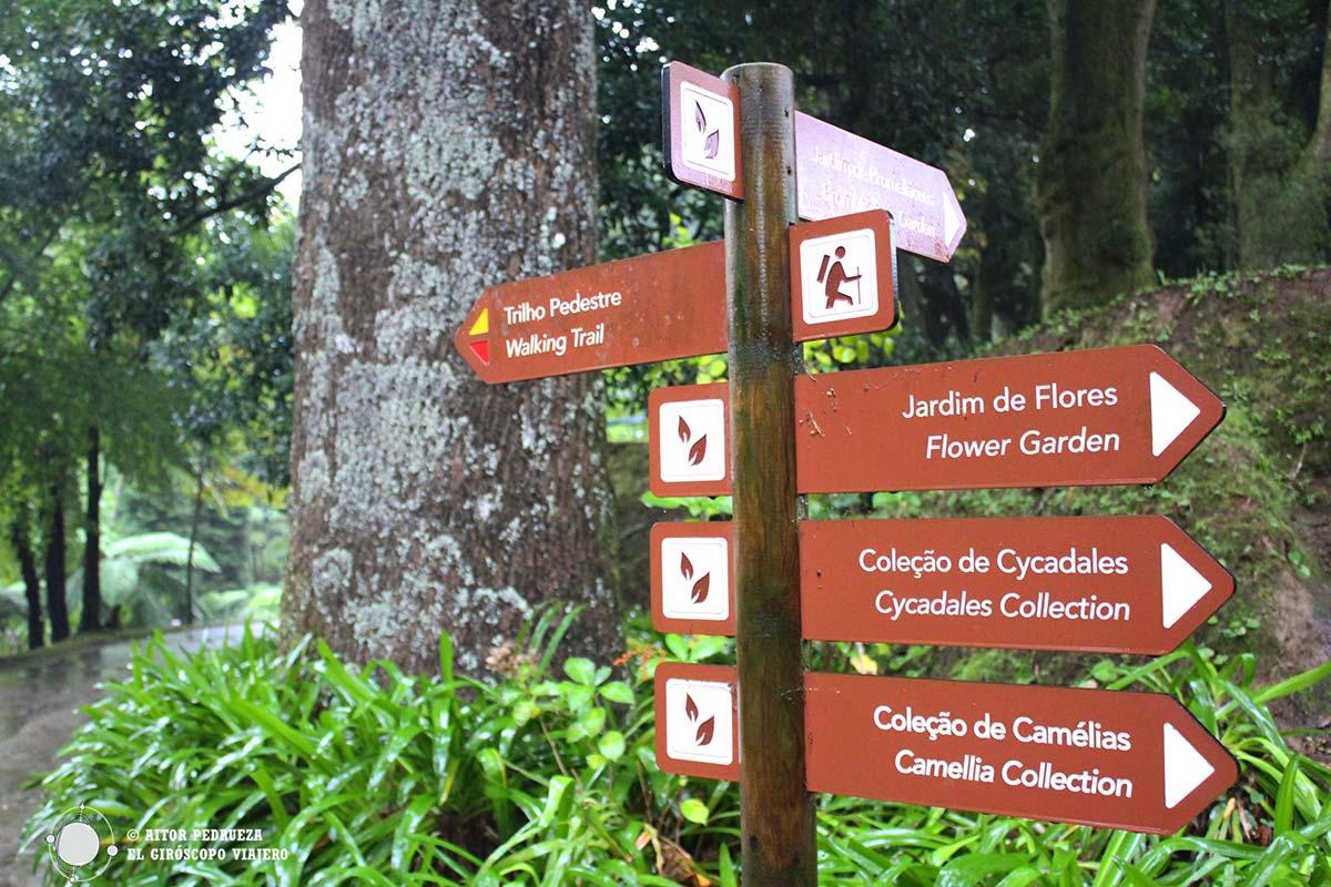Visita al Jardín botánico Terra Nostra